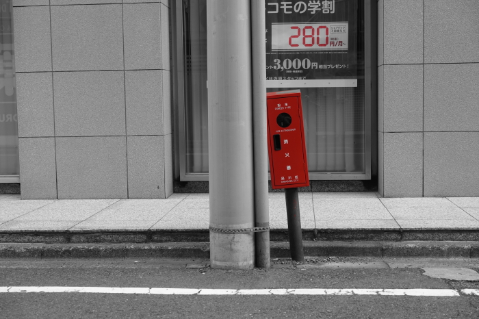 DSC00508-1.JPG