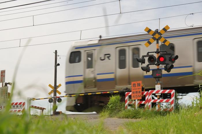 DSC01504-1.JPG