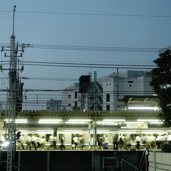 DSC02175 (1)-1.JPG