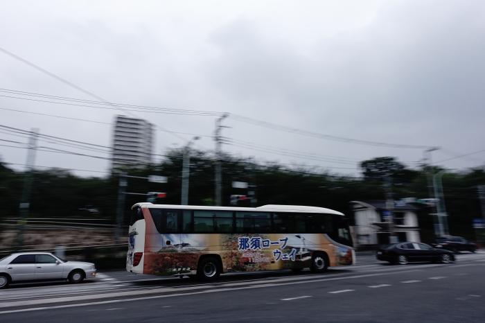 DSC02684-1.JPG