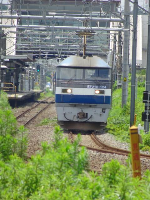 DSC02915.JPG
