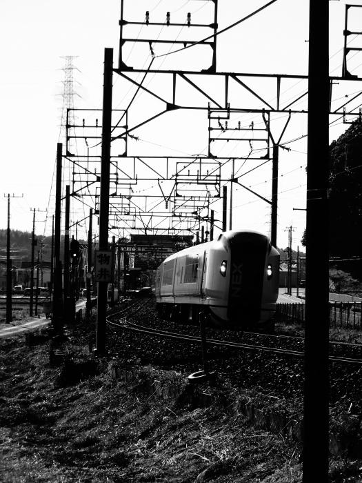DSC04058.JPG