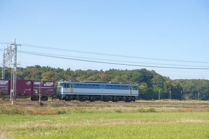 DSC04462-1-1.JPG