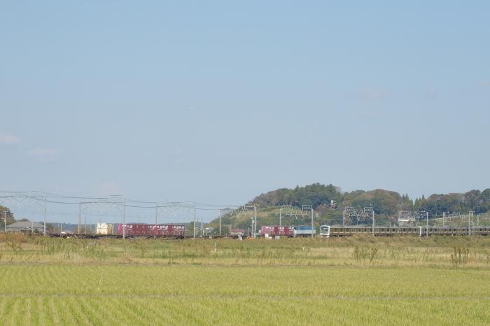 DSC04470-1-1.JPG