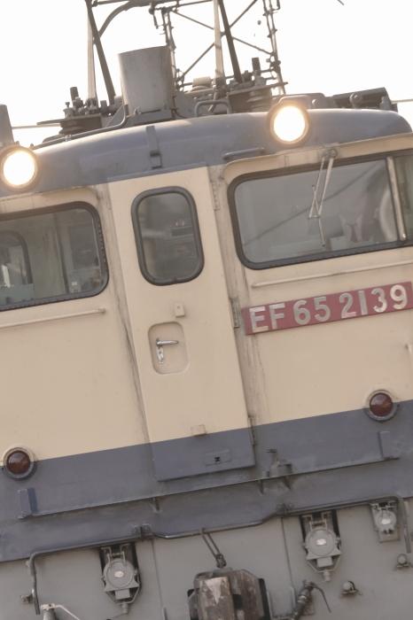 DSC04644-1-1.JPG