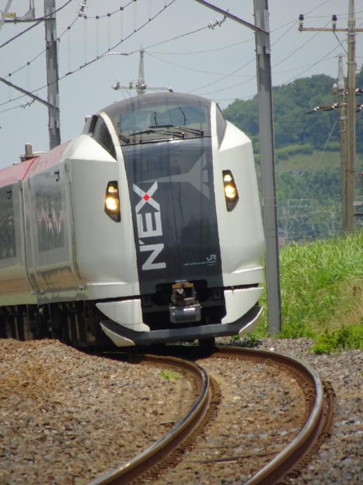 DSC04940-1.JPG
