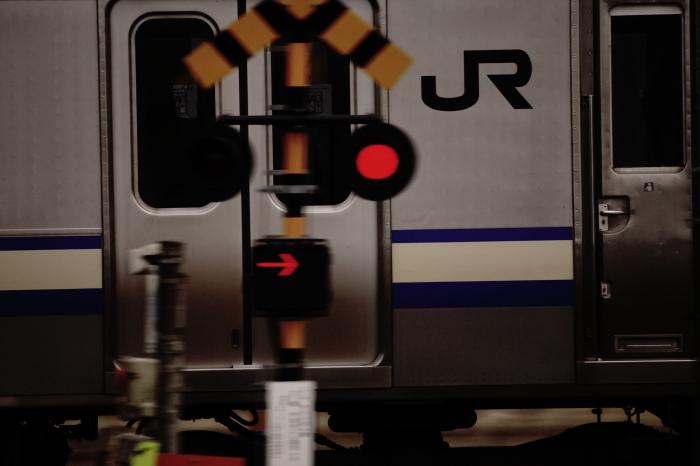 DSC05861.JPG