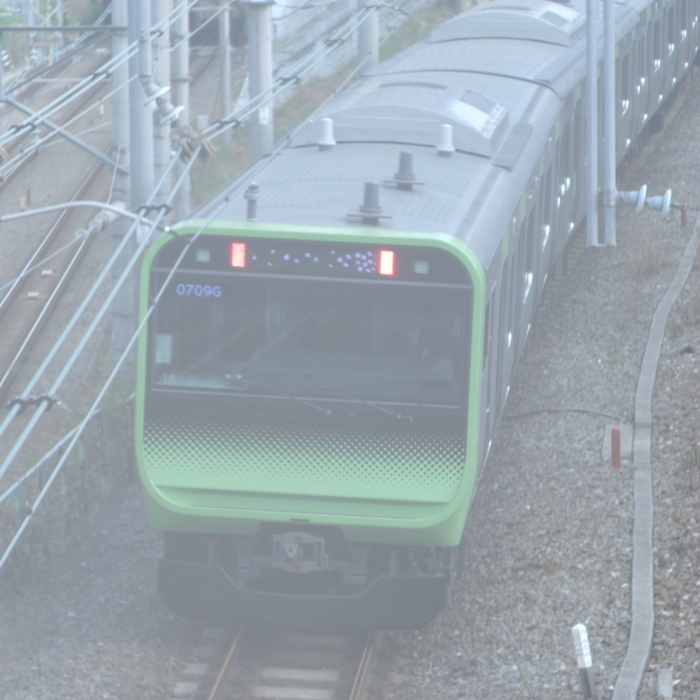 DSC00039-1.JPG