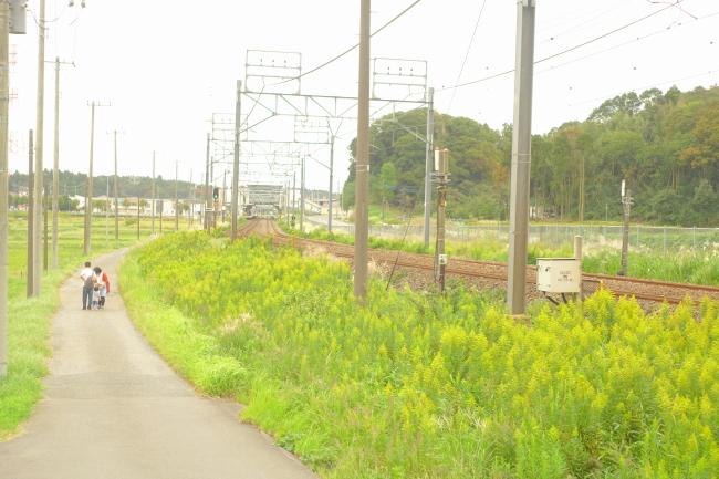 DSC02109-1.JPG