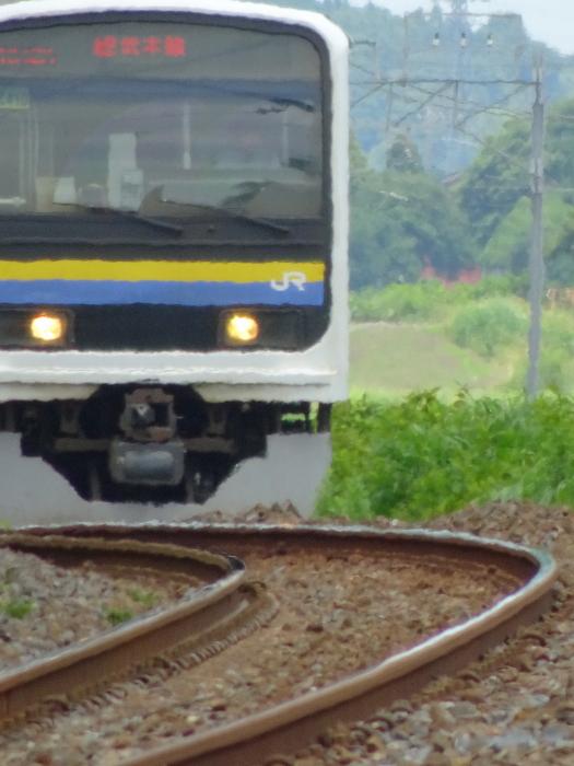 DSC05002-1.JPG