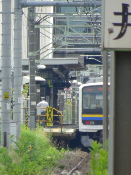 DSC05010-1.JPG