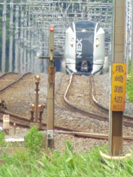 DSC05134-1.JPG