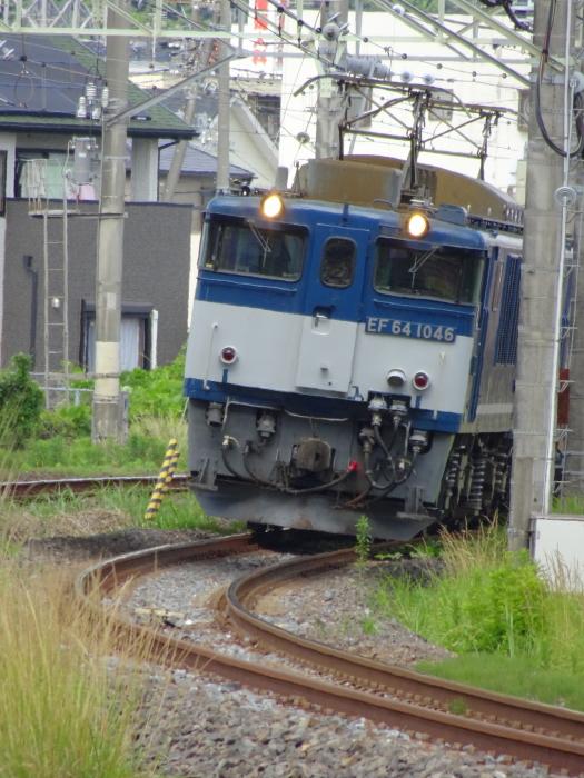 DSC05389-1.JPG